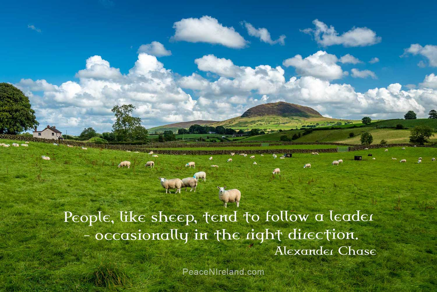 Slemish, County Antrim, where it is said Saint Patrick spent six years tending sheep as a slave from age sixteen