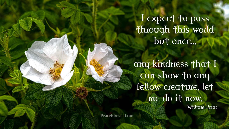 Kindness: William Penn